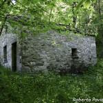 05 2004 circa Mulino di Tarsogno n55