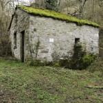 05 2014-03-23  Mulino di Tarsogno (13) n13