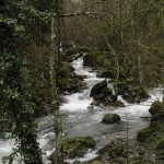 08 2014-03-23  Mulino di Tarsogno (15) Lubiana n15