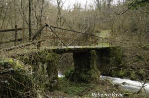 09 2014-03-23  Mulino di Tarsogno (16) passerella n16