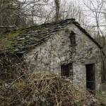 13 2014-03-23  Mulino di Tarsogno (26) n26