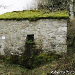 22 2014-03-23  Mulino di Tarsogno (51) n51