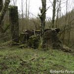 26 2014-03-23 Mulino di Tarsogno (03) in rovina n3