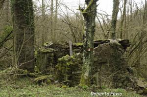27 2014-03-23 Mulino di Tarsogno (04) in rovina n4