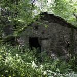 29 2004 circa Mulino di Tarsogno n54