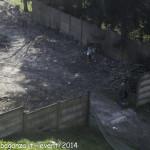 (381) Berceto esplosione 2014-04-10