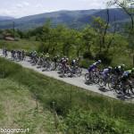 Giro Italia 2014 (317) gara ciclisti