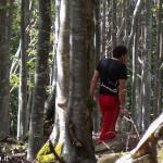 andar per funghi Val Taro 03-08-2014 (155)