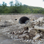strada provinciale 23 Albareto 05-08-2014 (20)