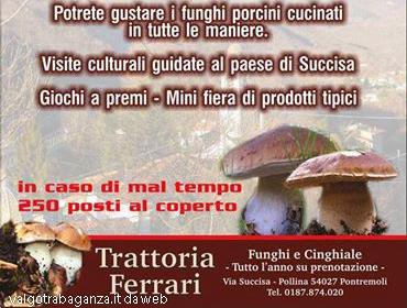 Locandina festa del fungo Succisa (3)