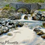Marco Mezzetta - Il Compimento della Natura
