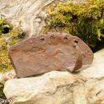 ferro da buoi (36)