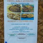 Festa della Castagna 2014 - Folta Albareto