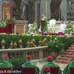 Papa Francesco (6) Sinodo straordinario sulla famiglia