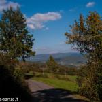 Val Gotra Autunno 2014 (130) foliage