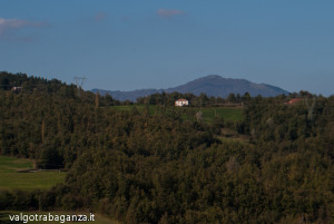 Val Gotra Autunno 2014 (215) Monte Pelpi