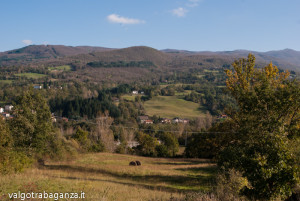 Val Gotra Autunno 2014 (218) Albareto