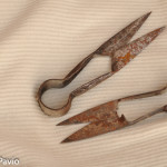 cesoie per la tosatura (3)