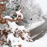 Albareto Neve Ghiaccio (11)