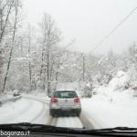Bedonia Neve Ghiaccio (19)