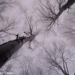Paesaggi nebbia di Roberto Pavio (12)