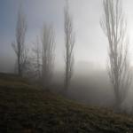Paesaggi nebbia di Roberto Pavio (22)