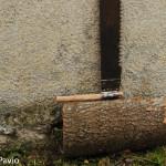 Segone per legna da boscaiolo truncòn (5)