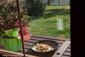 Cinciarella mangiatoia (10) teglia