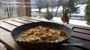 Video Pettirosso mangiatoia (3) teglia