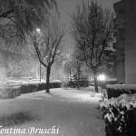 Parma neve (12) bianco nero 2015