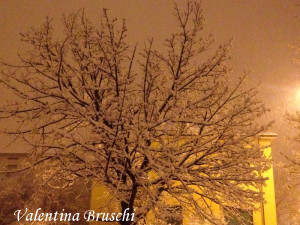 Parma neve (13) febbraio 2015