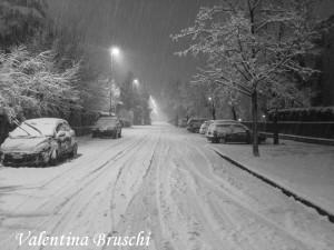 Parma neve (19) bianco nero 2015