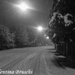 Parma neve (20) bianco nero 2015
