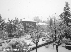 Parma neve (23) bianco nero 2015