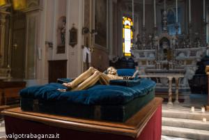 Bedonia (105) cristo norto