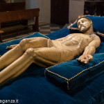 Bedonia (106) cristo norto