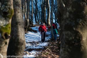 Monte Gottero (133) escursione