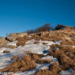 Monte Gottero (278) escursione