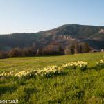 Val Baganza (111) Casino dei Pallavicino