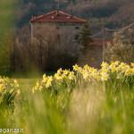 Val Baganza (113) Casino dei Pallavicino