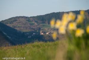Val Baganza (120) Casola