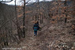 Val Gotra (192) natura