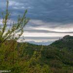 Belforte (120) Borgotaro