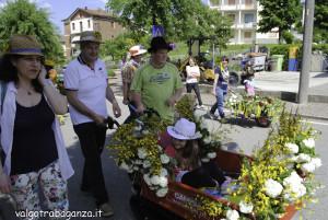 Festa della Primavera (120) Albareto