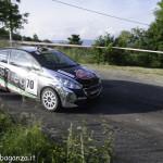Rally Taro 2015 pass 3 Folta (205)