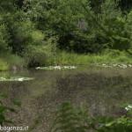 Borgotaro natura (100) lago Gorro