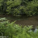 Borgotaro natura (102) lago Gorro