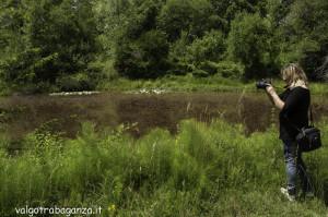 Borgotaro natura (106)