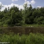 Borgotaro natura (107)