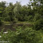 Borgotaro natura (148)
